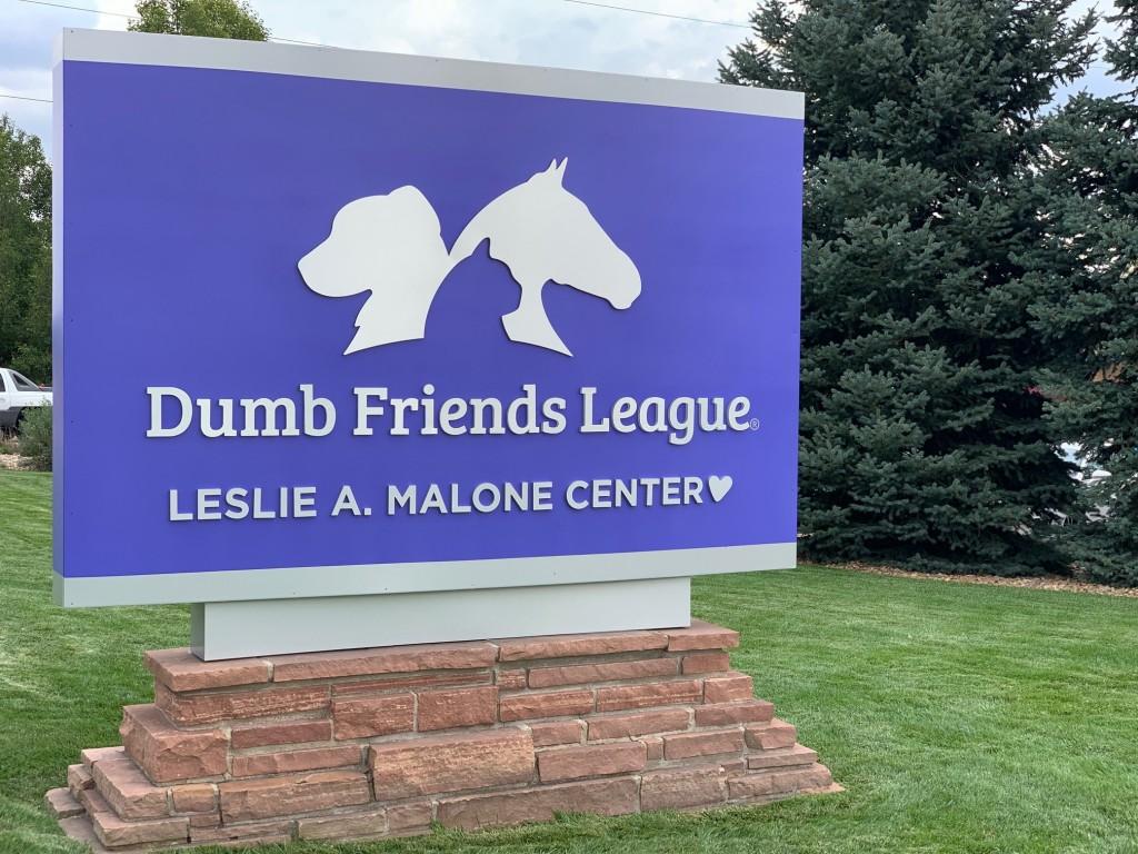 Best Vet Dumb Friends League