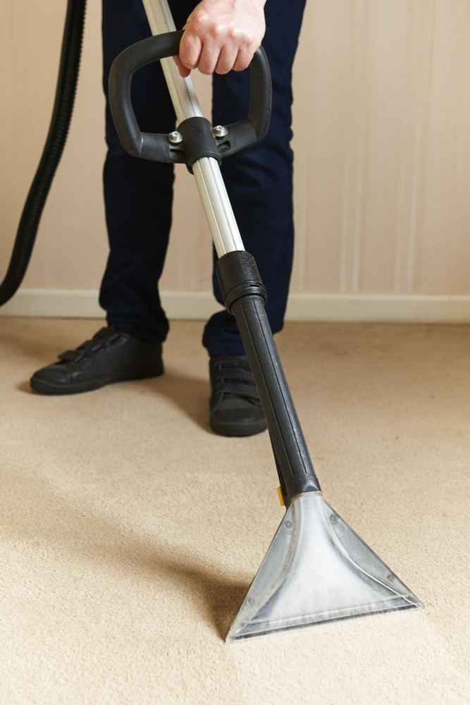 Professionally,cleaning,carpets