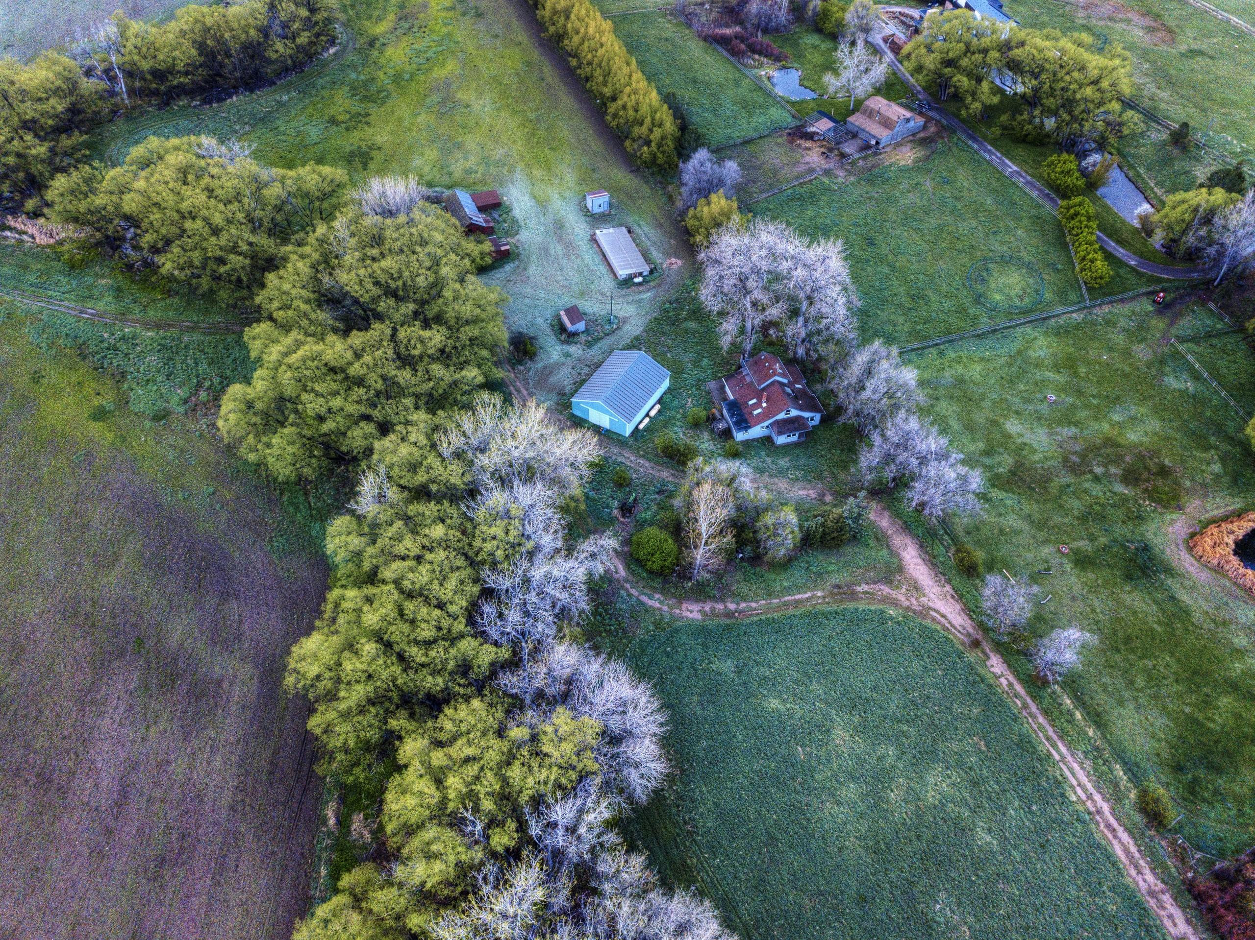 Fsp Mckenzie Farm 3 1 Emily Tracy